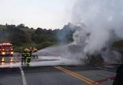 Motorista morre após caminhão pegar fogo na BR-491