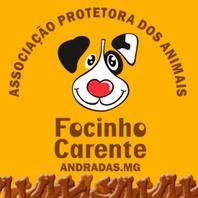 Associação Protetora dos Animais Focinho Carente