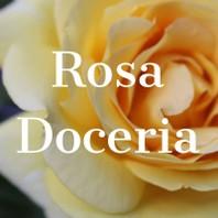 ROSA DOCERIA
