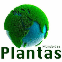 Floricultura Mundo das Plantas
