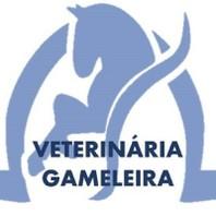 Veterinária Gameleira