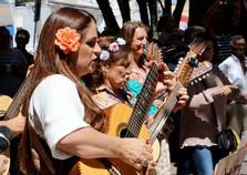 Grupo Viola em Flor participa da 3ª Dobrada Cultural no fim de semana