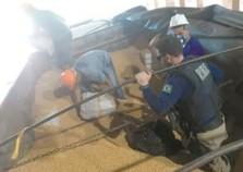 PRF apreende 1,4 tonelada de maconha em caminhão roubado