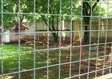 Educadoras são denunciadas por agredir crianças em creche de Rondon