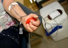 Hemonúcleo de Umuarama precisa urgente de sangue tipo O negativo