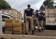 PRF apreende mais de 7 toneladas de maconha em carga de trigo