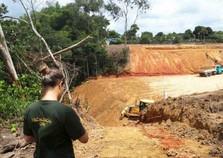 Obra é embargada por desmatamento irregular em Camaragibe
