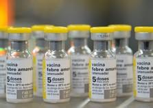 UBS's de Paranavaí oferecem vacinas contra febre amarela e sarampo