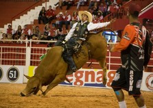 Rodeio com touros terá os maiores campeões do Brasil