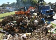 Falta de limpeza é o principal fator para aparecimento de escorpiões em Umuarama