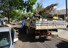 Prefeitura esclarece sobre coleta de lixo orgânico, folhas e galhos nos bairros