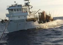 Filha de desaparecido busca informações sobre naufrágio em Angra: 'Barco afundou em menos de cinco minutos'
