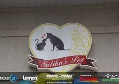1 Ano Sulika's Pet