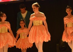 Ballet da Tia Fla