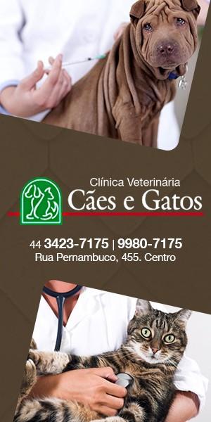 Clínica Veterinária Cães e Gatos