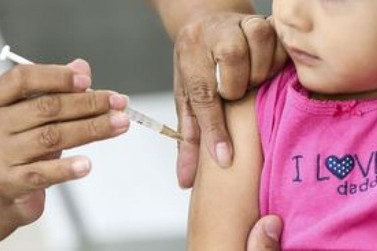Ministério pede imunização contra febre amarela antes do verão