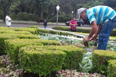 Relógio Floral em Poços de Caldas ganha novas espécies