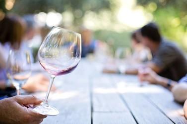 Festa do Vinho de Andradas terá cursos sobre produção, degustação e harmonização