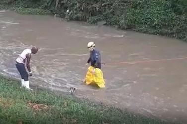 Cão levado por correnteza é resgatado pelos Bombeiros