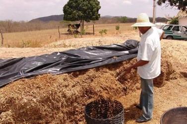 Produtores rurais devem adotar hábitos de prevenção contra o Coronavírus