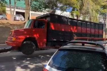 Polícia Militar prende sete pessoas por furto de gado
