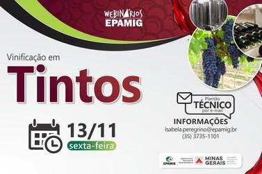 Evento online da EPAMIG aborda processo de vinificação nessa sexta