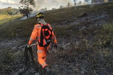 Incêndio destrói cerca de 70 mil m² de vegetação às margens da BR-459