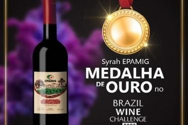 Vinho produzido com técnica usada em Andradas é homenageado na ALMG