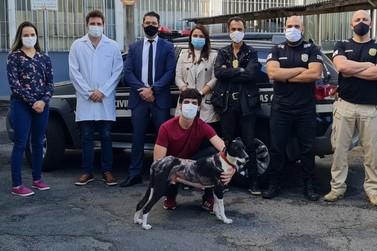 Polícia Civil prende suspeito de atear fogo em cachorro em Poços de Caldas