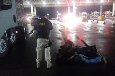 Três são detidos na Fernão Dias suspeitos de roubo de veículos
