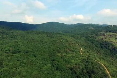 Revitalização do Parque da Grota Funda pretende viabilizar o turismo ecológico