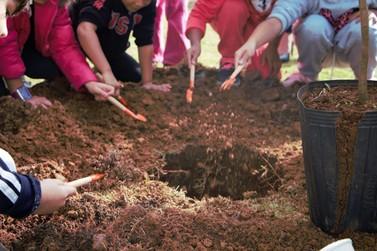 Crianças plantam árvores representando o início da Semana do Meio Ambiente