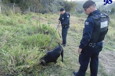 Força Policial de Atibaia faz operação contra o tráfico de drogas no Caetetuba