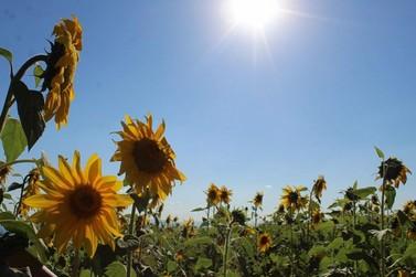 Clima: Fim de semana será de sol entre nuvens, mas sem chuva em Atibaia