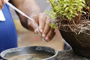 Prefeitura informa população sobre cuidados em relação à Dengue em Atibaia