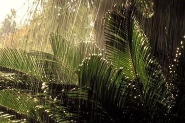 Sol ou chuva? Confira a previsão do tempo para a semana em Atibaia