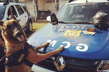 Jovem é preso e adolescente apreendido por tráfico de drogas em Bragança