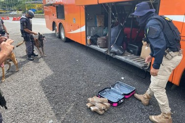 Jovem de 18 anos é presa com 8 kg de maconha na Fernão Dias em Atibaia