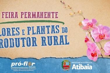 Com 45 produtores, Feira de Flores e Plantas acontece todos os sábados