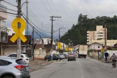 Falta do cinto de segurança é infração de trânsito mais cometida em Guabiruba