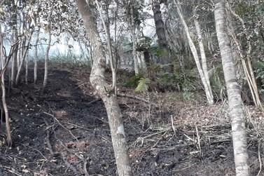 Brusque registra 8 incêndios entre sábado (21) e domingo (22)