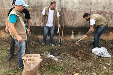 Programa de endemias realiza ação de combate ao caramujo africano no Emma 2