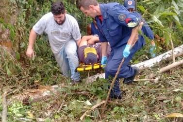 Homem é atingido por tronco de árvore, no bairro Lageado Alto