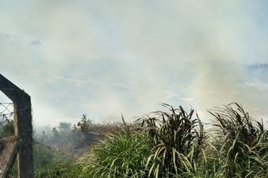 Corpo de Bombeiros chama atenção da população para evitar queimadas