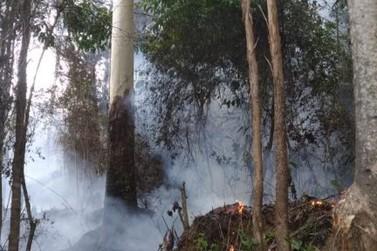 Incêndio florestal atinge cerca de 30 mil M² e põe residências em risco