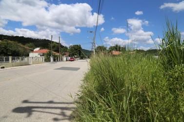 Limpeza de calçadas e margens de estradas é responsabilidade do proprietário