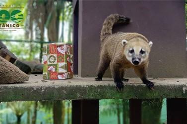 Parque Zoobotânico de Brusque já recebeu 3,5 mil visitantes nas férias