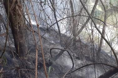 Bombeiros atuam na contenção de incêndio em vegetação, no Guarani