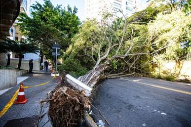 Governo do Estado auxilia na reconstrução de 233 cidades atingidas por ciclone
