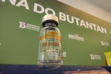 Fim do mistério! Saiba a quantidade de vacinas destinadas a Brusque